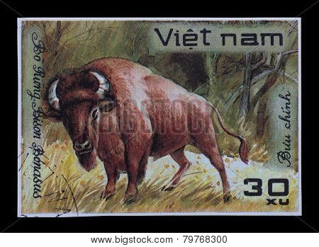 Post Stamp. Bison Bonasus
