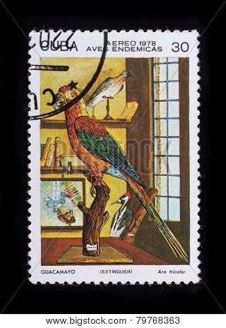 Post Stamp. Birds - Ara Tricolor