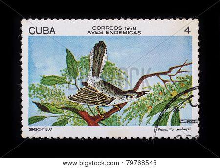 Post Stamp. Birds - Sinsontillo