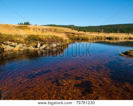 Peat bog of Jizera Mountains