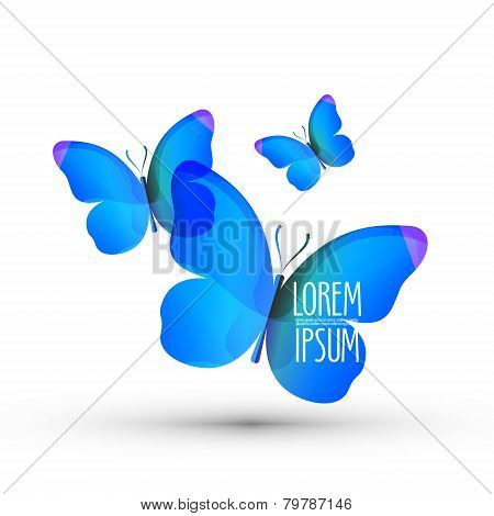 butterfly vector logo design template. insect or nature icon.