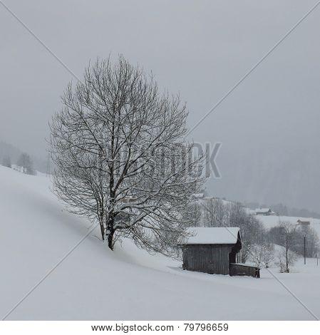 Rural Winter Scene In The Swiss Alps