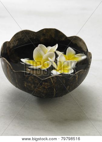 Coconut bowl with frangipani flower