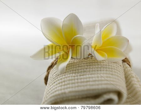 frangipani on the hand towel