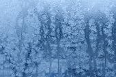picture of wane  - Ice - JPG
