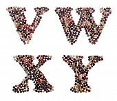 foto of letter x  - Letter set made of mixed peppercorns  - JPG
