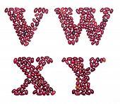 stock photo of letter x  - Letter set made of red kidney beans  - JPG