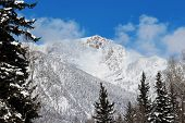 stock photo of blanket snow  - Snow blanket covering Middle Mountains in Vallecito - JPG