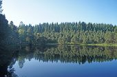 stock photo of mood  - Lake surrounded by forest in the Black Forest in Germany trees reflected in water blue sky - JPG