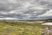 pic of fjord  - Northern Norwegian landscape with fjords mountains and shore with moss - JPG