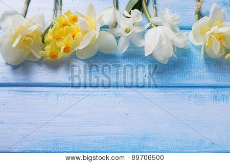 Background With Fresh Spring White And Yellow Flowers