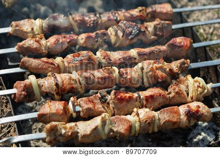Skewers On The Grill On The Nature