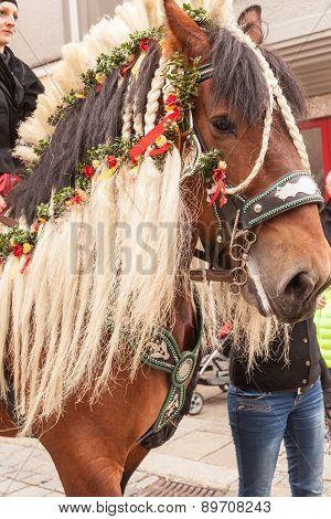 Traunstein/Deutschland/Bavaria - 06th of April: decorated horse by the Georgi's ride in Traunstein