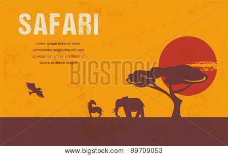 Africa - background, template and illustrations
