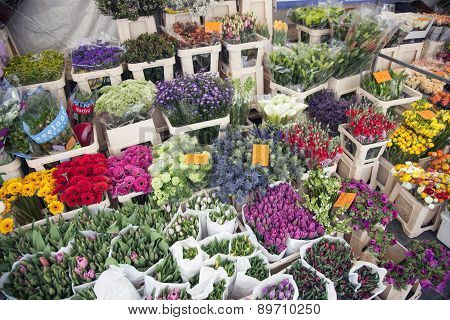 Tulips And Other Flowers On Marketplace In The Netherlands