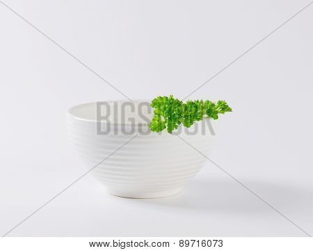 porcelain bowl with piece of fresh parsley