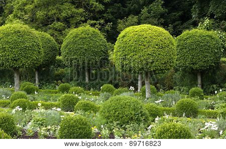 France, Formal Garden Of The Castle Of Sceaux