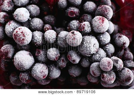 Closeup of frozen currant berries