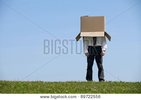 Man standing in park with cardboard box over his head