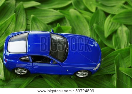 Toy car on green leaves background