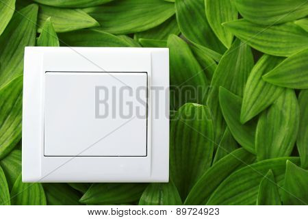 Light switch on green leaves background