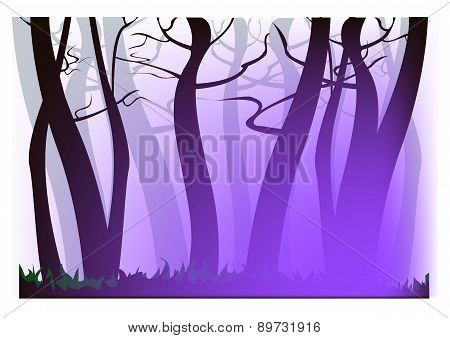 Morning Purple Haze
