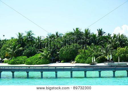 View of beautiful blue ocean water and trees in Baros Maldives
