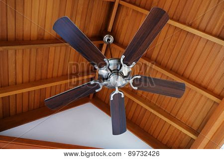 Ceiling fan, indoors