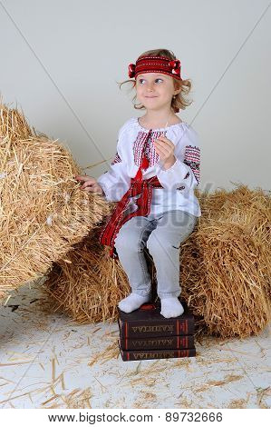 Ukrainian Girl In National Dress With Economic Book