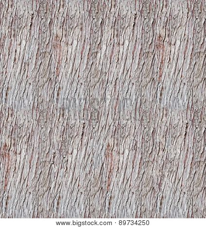 Rugged tree bark seamless texture.