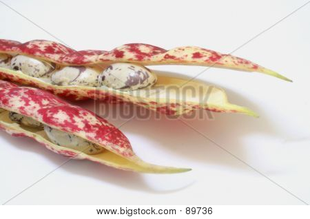 Red Beans And Pods
