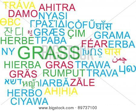 Background concept wordcloud multilanguage international many language illustration of grass