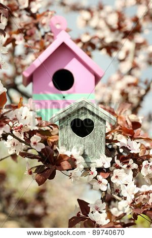 Decorative nesting boxes on bright background