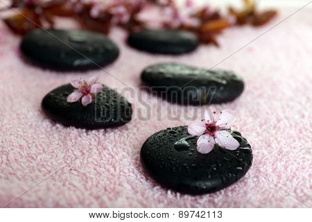 Spa stones and spring flowers on towel background