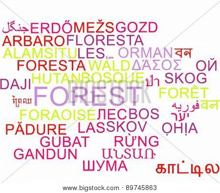 Background concept wordcloud multilanguage international many language illustration of forest