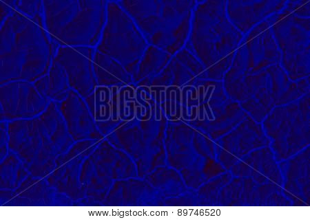 Navy Blue Abstract Shapes