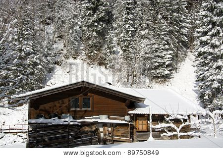 Pinzgau, Austria