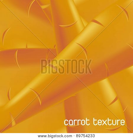 Orange Carrot Texture Background Vegetable Vector Illustration