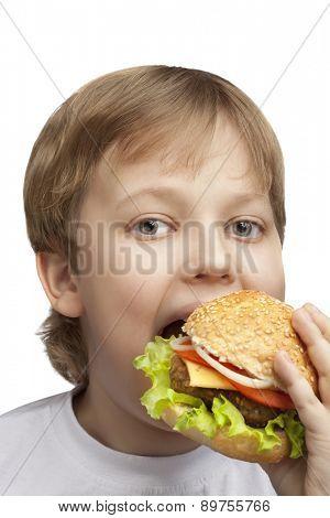 happy boy with burger