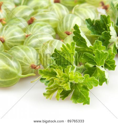 gooseberries isolated on white