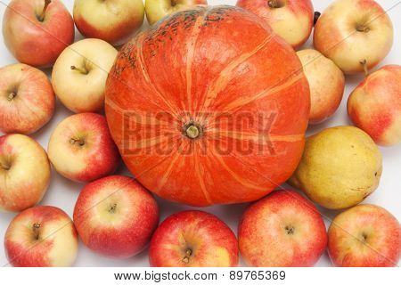 orange pumpkin with apples, background