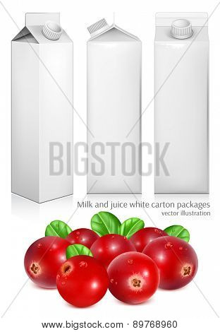 Milk and juice white carton packages. Ripe red cranberries with leaves. Vector illustration.