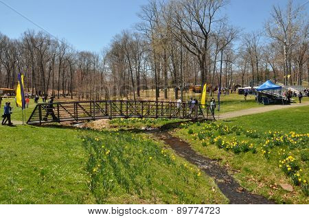 The 37th Annual Daffodil Festival in Meriden, Connecticut