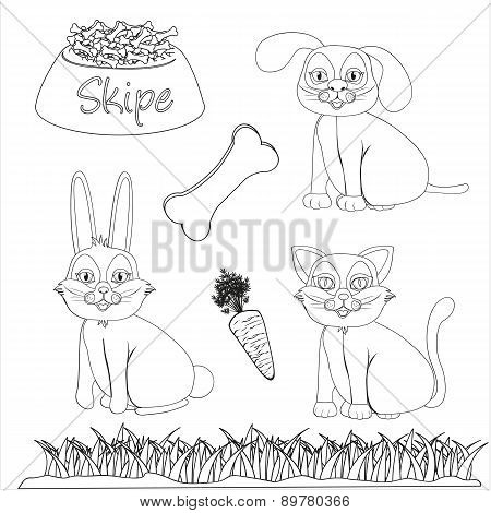 Set Of Drawings Of Domestic Pets And Accessories For Coloring