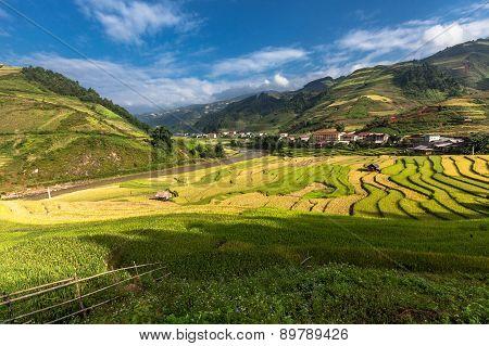 Rice fields on terraced of Mu Cang Chai YenBai Vietnam. Rice fields prepare the harvest at Northwest