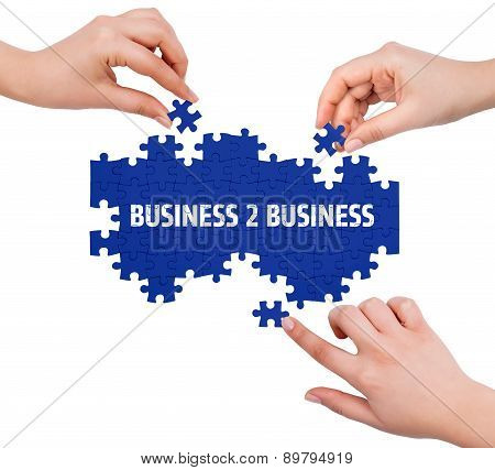 Hands With Puzzle Making Business 2 Business Word  Isolated On White