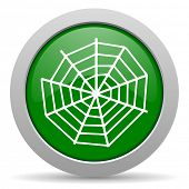 picture of spider web  - spider web green glossy web icon - JPG