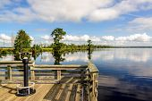 stock photo of swamps  - Lake Drummond is a freshwater lake at the center of the Great Dismal Swamp a marshy region on the Coastal Plain of southeastern Virginia and northeastern North Carolina between Norfolk Virginia and Elizabeth City North Carolina - JPG