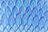 picture of spears  - abstract blue stucco feather in spear shape - JPG