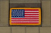 stock photo of coyote  - Rounded American flag patch on U - JPG